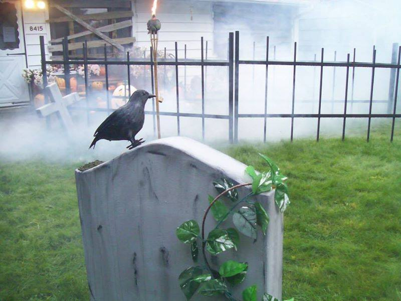 "Quoth the crow ""proceed if you dare"""